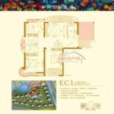 EC1�峰�� �㈢Н绾�117骞崇背